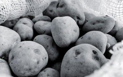 Warum Kartoffelwerfen doch eine Körperverletzung sein kann